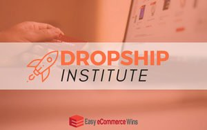 High Ticket Shopify Drop Shipping Niche Selection - Easy